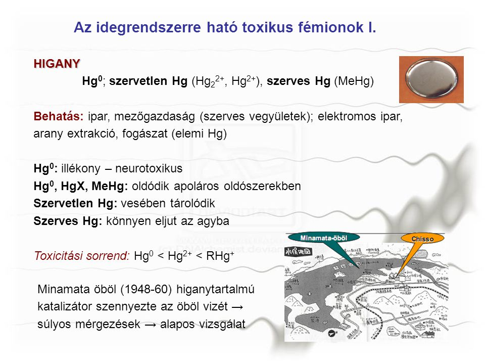 Az idegrendszerre ható toxikus fémionok I. HIGANY Hg 0 ; szervetlen Hg (Hg 2 2+, Hg 2+ ), szerves Hg (MeHg) Behatás: ipar, mezőgazdaság (szerves vegyü