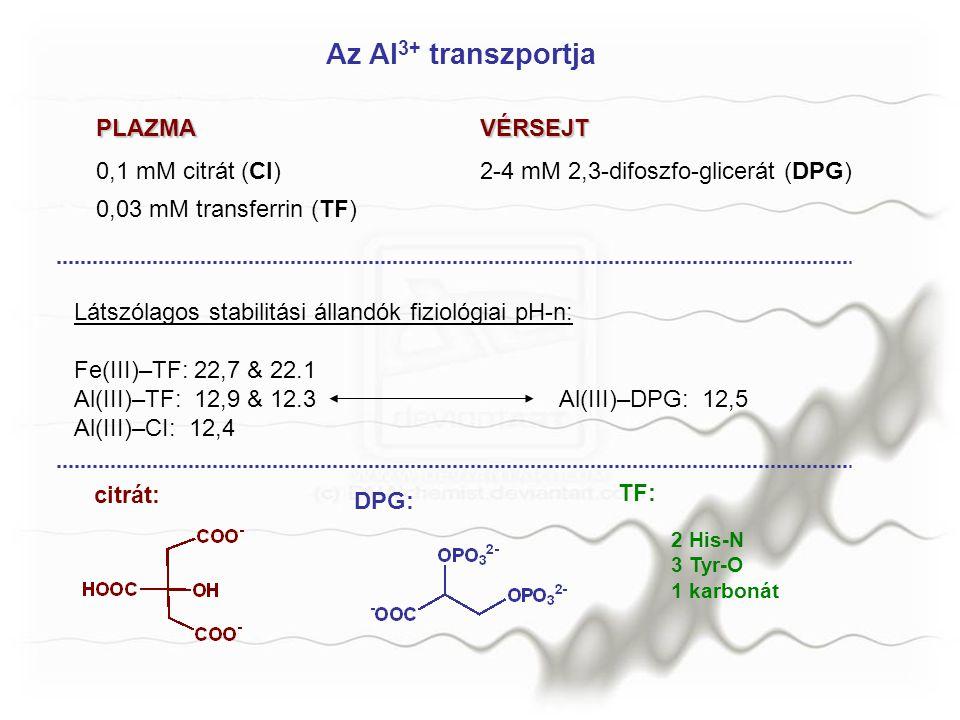 Az Al 3+ transzportja PLAZMAVÉRSEJT 0,1 mM citrát (CI)2-4 mM 2,3-difoszfo-glicerát (DPG) 0,03 mM transferrin (TF) Látszólagos stabilitási állandók fiz
