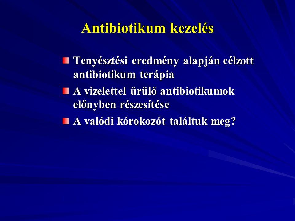 Antibiotikum kezelés Tenyésztési eredmény alapján célzott antibiotikum terápia A vizelettel ürülő antibiotikumok előnyben részesítése A valódi kórokoz