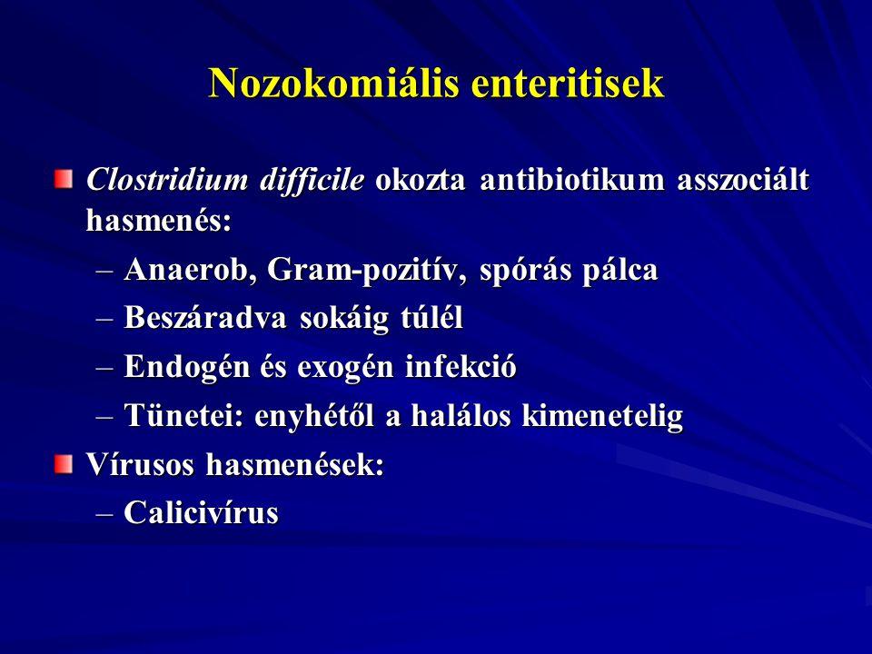 Nozokomiális enteritisek Clostridium difficile okozta antibiotikum asszociált hasmenés: –Anaerob, Gram-pozitív, spórás pálca –Beszáradva sokáig túlél
