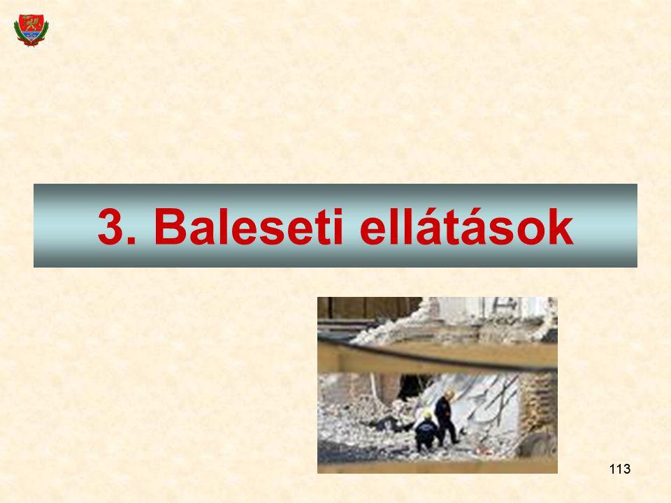 113 3. Baleseti ellátások