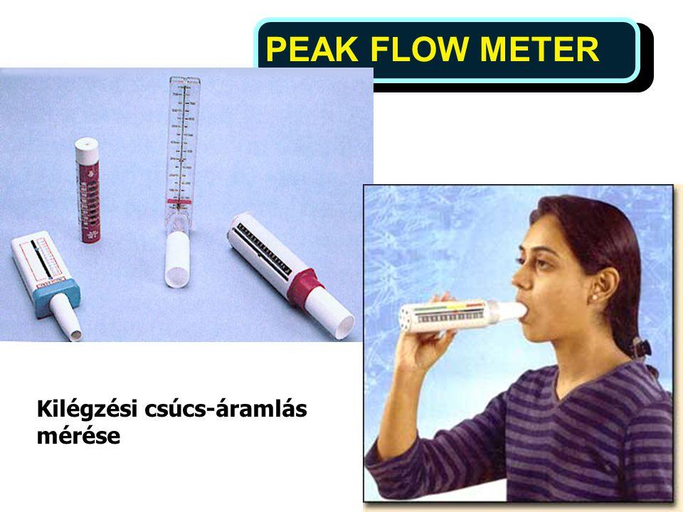PEAK FLOW METER 12 Kilégzési csúcs-áramlás mérése