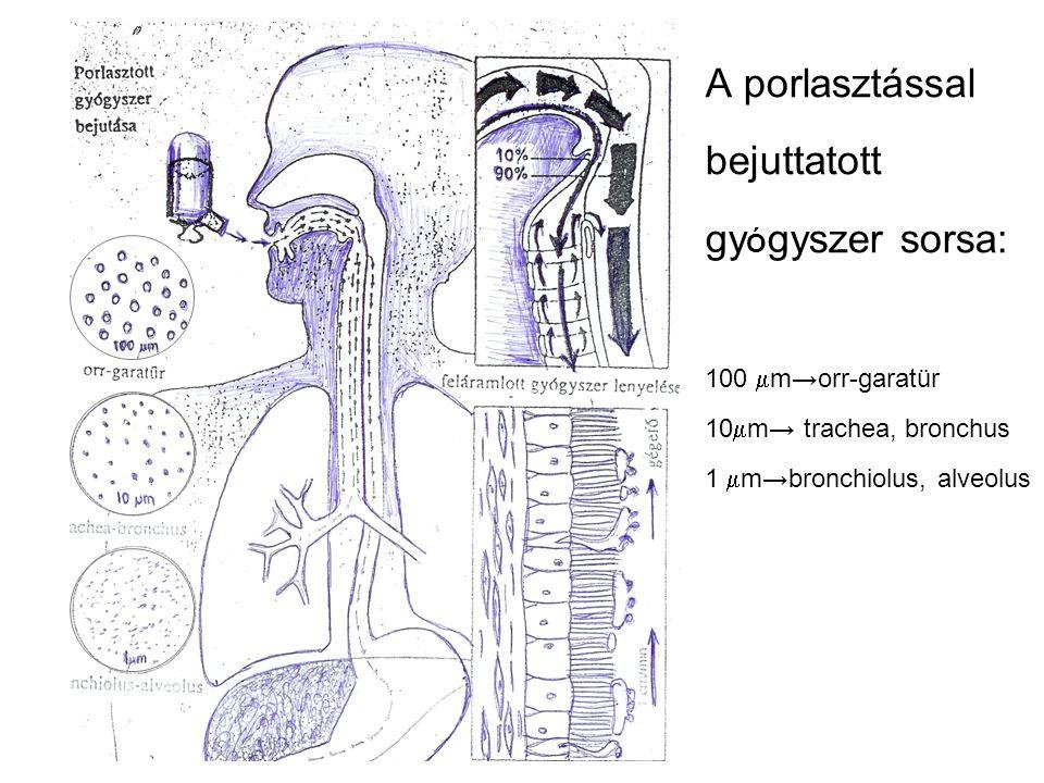 A porlasztással bejuttatott gy Ó gyszer sorsa: 100  m→orr-garatür 10  m→ trachea, bronchus 1  m→bronchiolus, alveolus