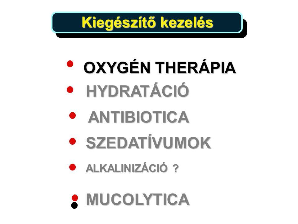 OXYGÉN THERÁPIA HYDRATÁCIÓ ANTIBIOTICA SZEDATÍVUMOK ALKALINIZÁCIÓ ? MUCOLYTICA Kiegészítő kezelés Kiegészítő kezelés 25