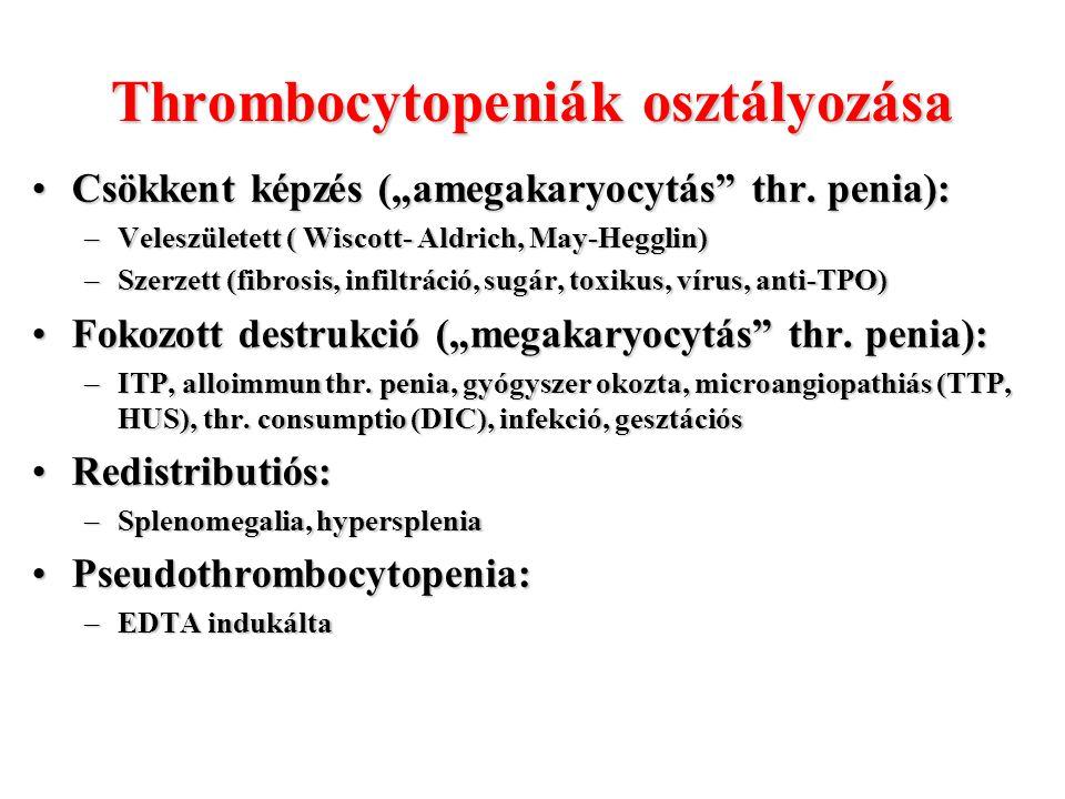 """Thrombocytopeniák osztályozása Csökkent képzés (""""amegakaryocytás"""" thr. penia):Csökkent képzés (""""amegakaryocytás"""" thr. penia): –Veleszületett ( Wiscott"""