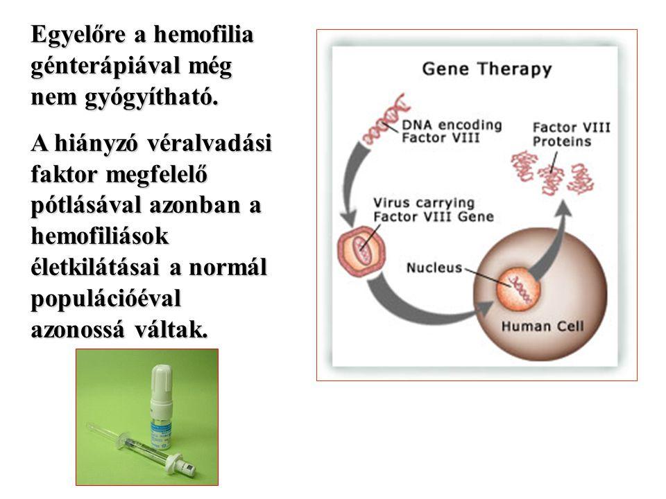 Egyelőre a hemofilia génterápiával még nem gyógyítható. A hiányzó véralvadási faktor megfelelő pótlásával azonban a hemofiliások életkilátásai a normá