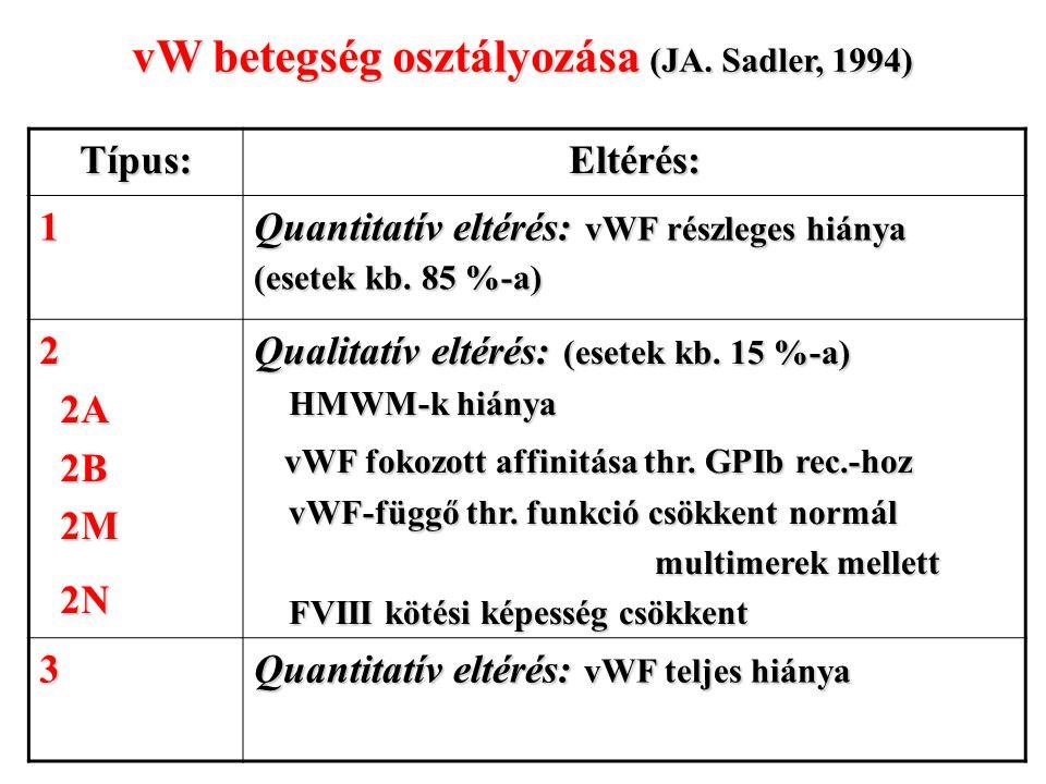 vW betegség osztályozása (JA. Sadler, 1994) Típus:Eltérés: 1 Quantitatív eltérés: vWF részleges hiánya (esetek kb. 85 %-a) 2 2A 2A 2B 2B 2M 2M 2N 2N Q