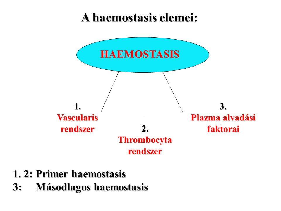 A haemostasis elemei: HAEMOSTASIS HAEMOSTASIS 1. Vascularis rendszer 2. Thrombocyta rendszer 3. Plazma alvadási faktorai 1. 2: Primer haemostasis 3: M