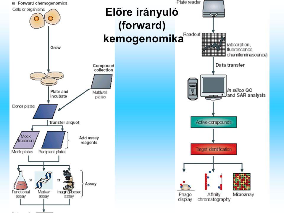 Előre irányuló (forward) kemogenomika