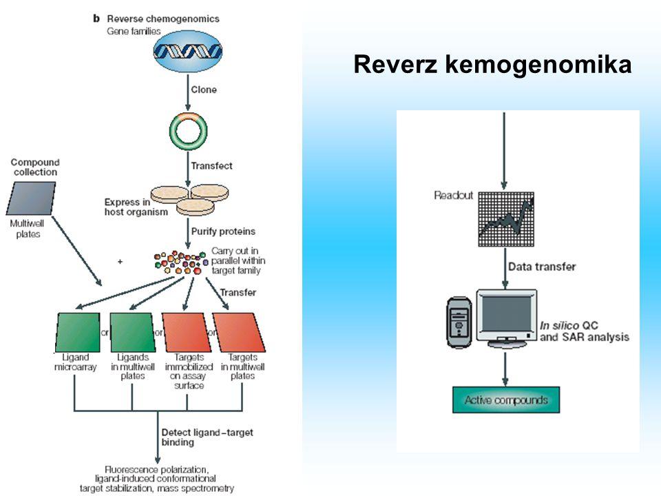 Prediktív kemogenomika A prediktív kemogenomika célja a kezelésre adott válasz jellemzése, illetve új gyógyászati molekulák azonosítása.