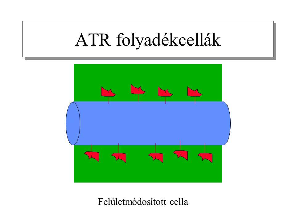 ATR folyadékcellák Felületmódosított cella