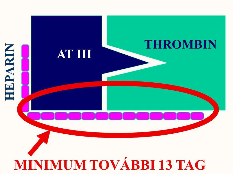 AT III THROMBIN HEPARIN MINIMUM TOVÁBBI 13 TAG