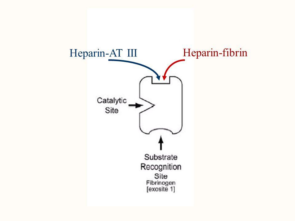Az APTI döntően anti II-faktor aktivitást mér Az APTI specificitása (összefüggése a heparin szinttel) elvész: - atiphospholipid ellenanyag jelenlétében - véralvadási faktor deficienciában - thrombolysisnél - K vitamin antagonista kezelésnél A heparin hatásának monitorozása