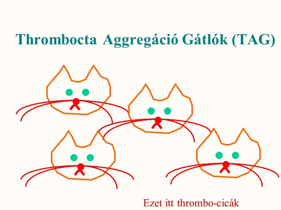Thrombocta Aggregáció Gátlók (TAG) Ezet itt thrombo-cicák