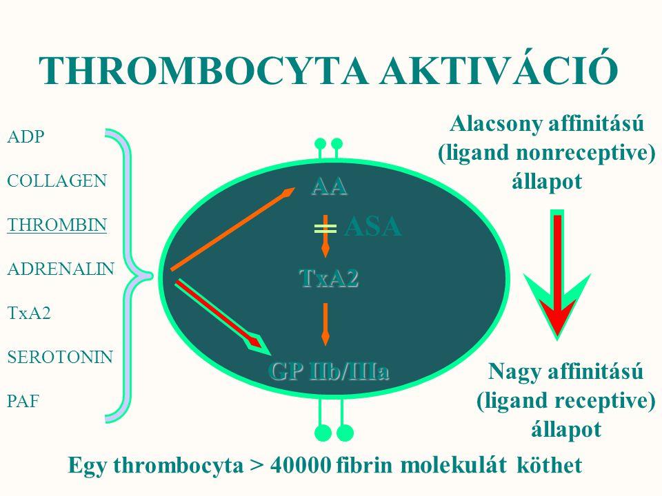 THROMBOCYTA AKTIVÁCIÓ Alacsony affinitású (ligand nonreceptive) állapot Nagy affinitású (ligand receptive) állapot Egy thrombocyta > 40000 fibrin mole