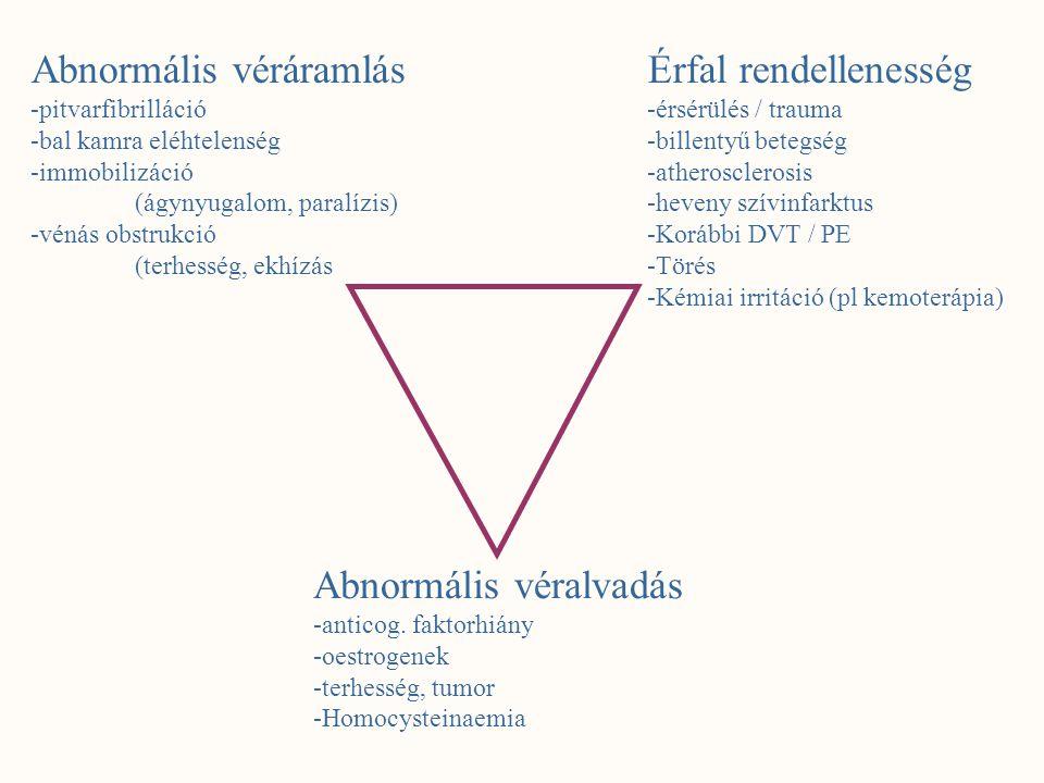 Abnormális véráramlás -pitvarfibrilláció -bal kamra eléhtelenség -immobilizáció (ágynyugalom, paralízis) -vénás obstrukció (terhesség, ekhízás Érfal r