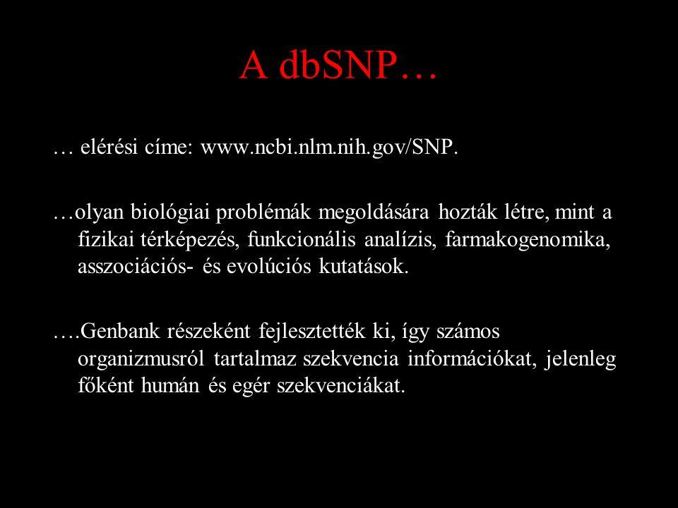 A dbSNP… … elérési címe: www.ncbi.nlm.nih.gov/SNP.