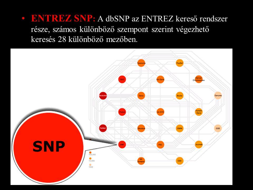 ENTREZ SNP : A dbSNP az ENTREZ kereső rendszer része, számos különböző szempont szerint végezhető keresés 28 különböző mezőben.