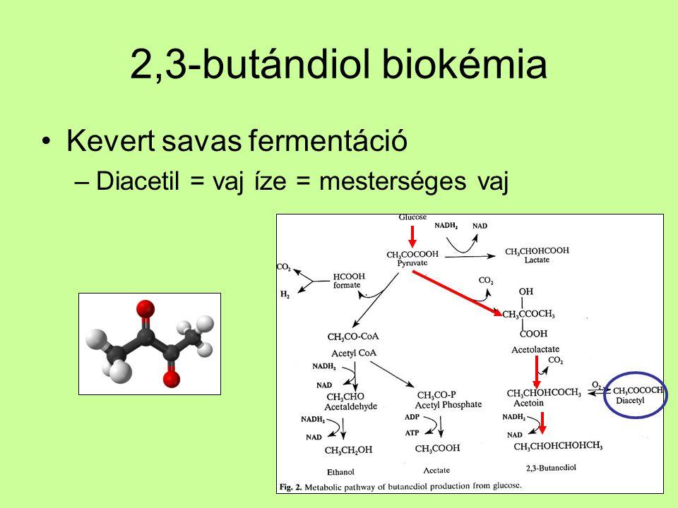 2,3-butándiol termeltetés Enterobacter cloaceae –Fakultatív anaerob, Gram - Sok O 2 → sok ATP = biomassza termelés Kevés O 2 → kevert termékek DOT ≤ 0,3% 2,3-butándiol a fő termék