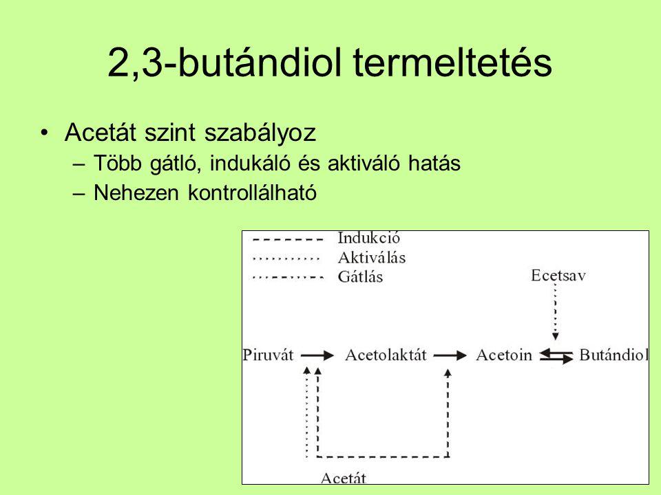 2,3-butándiol termeltetés Acetát szint szabályoz –Több gátló, indukáló és aktiváló hatás –Nehezen kontrollálható