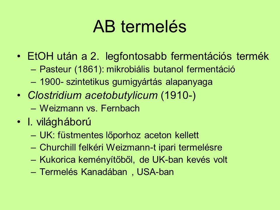 AB termelés EtOH után a 2. legfontosabb fermentációs termék –Pasteur (1861): mikrobiális butanol fermentáció –1900- szintetikus gumigyártás alapanyaga