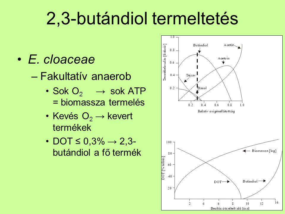 2,3-butándiol termeltetés E. cloaceae –Fakultatív anaerob Sok O 2 → sok ATP = biomassza termelés Kevés O 2 → kevert termékek DOT ≤ 0,3% → 2,3- butándi