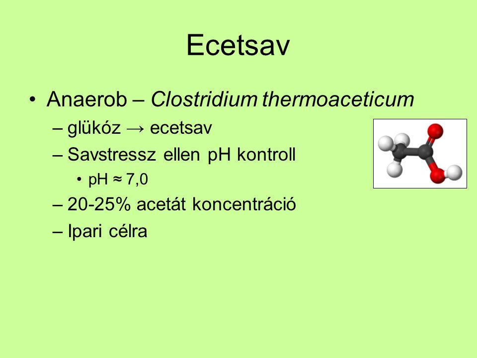 Ecetsav Anaerob – Clostridium thermoaceticum –glükóz → ecetsav –Savstressz ellen pH kontroll pH ≈ 7,0 –20-25% acetát koncentráció –Ipari célra
