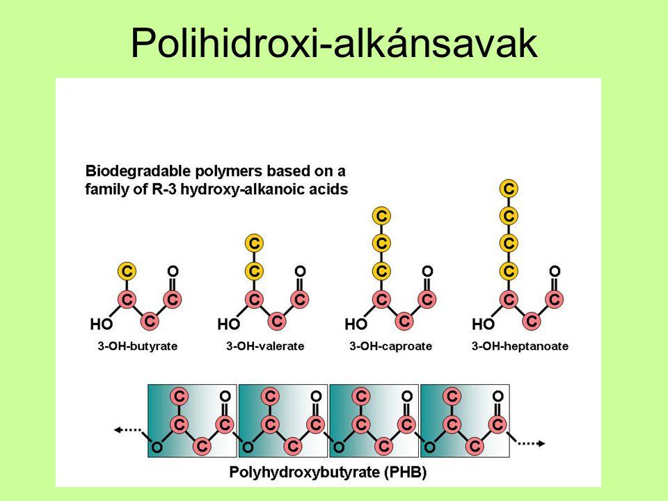 Polihidroxi-alkánsavak