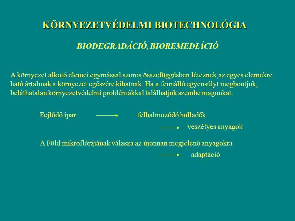 Alapfogalmak  biotechnológia biotechnologie - (EREKY Károly, 1917) all work by which products are produced from raw materials with the help of living organisms [Ereky]  alkalmazott mikrobiológia - biokonverzió, biotranszformáció különböző (toxikus) vegyületek mikrobiális átalakítása - biodegradáció nem kívánatos, környezetre káros anyagok lebontása mikrobiális úton - bioremediáció (= tisztítás) a környezet megtisztítása a toxikus hulladékoktól mikrobiális módszerekkel  környezetvédelem - megelőzés - tervszerű környezetfejlesztés - környezetünk megóvása, védelme
