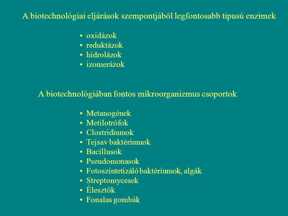 A biotechnológiai eljárások szempontjából legfontosabb tipusú enzimek oxidázok reduktázok hidrolázok izomerázok A biotechnológiában fontos mikroorgani
