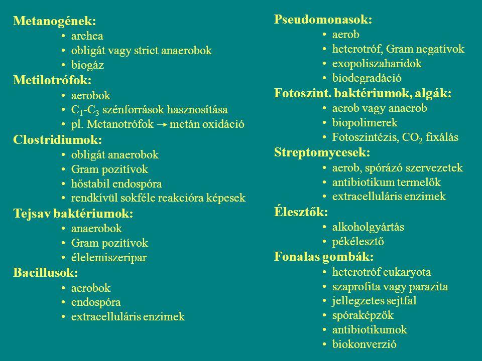 Metanogének: archea obligát vagy strict anaerobok biogáz Metilotrófok: aerobok C 1 -C 3 szénforrások hasznosítása pl. Metanotrófok metán oxidáció Clos