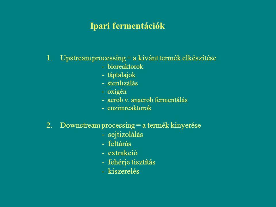 Ipari fermentációk 1.Upstream processing = a kívánt termék elkészítése - bioreaktorok - táptalajok - sterilizálás - oxigén - aerob v. anaerob fermentá