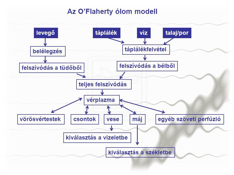 Az O'Flaherty ólom modell levegőtáplálékvíztalaj/por belélegzés táplálékfelvétel felszívódás a bélből felszívódás a tüdőből teljes felszívódás vérplaz