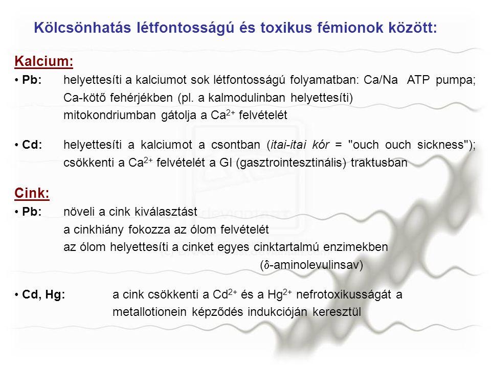 Kölcsönhatás létfontosságú és toxikus fémionok között: Kalcium: Pb:helyettesíti a kalciumot sok létfontosságú folyamatban: Ca/Na ATP pumpa; Ca-kötő fe