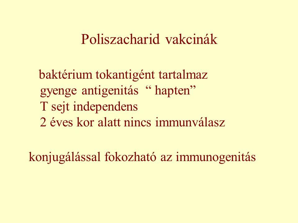 """Poliszacharid vakcinák baktérium tokantigént tartalmaz gyenge antigenitás """" hapten"""" T sejt independens 2 éves kor alatt nincs immunválasz konjugálássa"""