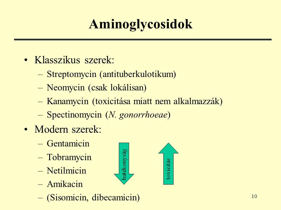 10 Aminoglycosidok Klasszikus szerek: –Streptomycin (antituberkulotikum) –Neomycin (csak lokálisan) –Kanamycin (toxicitása miatt nem alkalmazzák) –Spectinomycin (N.