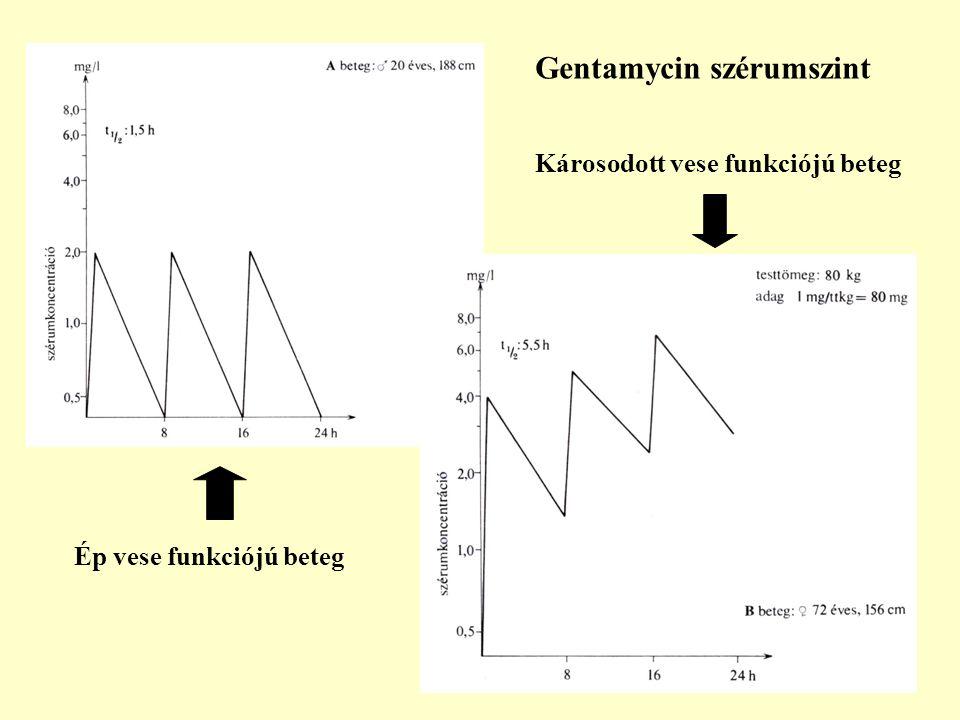 12 Gentamycin szérumszint Ép vese funkciójú beteg Károsodott vese funkciójú beteg