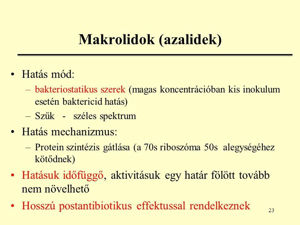 23 Makrolidok (azalidek) Hatás mód: –bakteriostatikus szerek (magas koncentrációban kis inokulum esetén baktericid hatás) –Szűk - széles spektrum Hatás mechanizmus: –Protein szintézis gátlása (a 70s riboszóma 50s alegységéhez kötődnek) Hatásuk időfüggő, aktivitásuk egy határ fölött tovább nem növelhető Hosszú postantibiotikus effektussal rendelkeznek