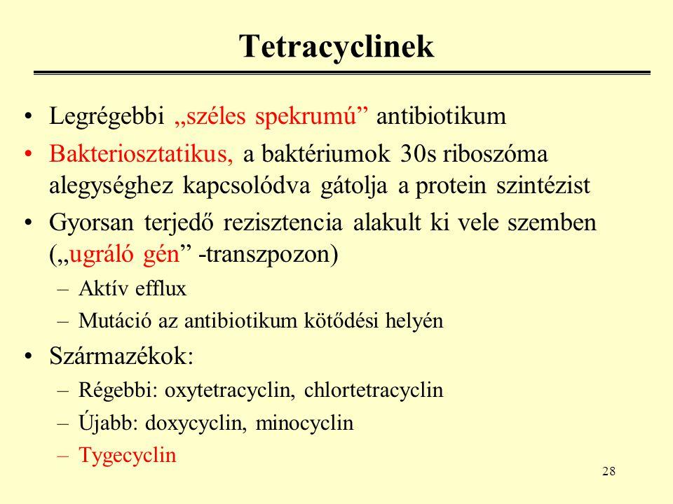 """28 Tetracyclinek Legrégebbi """"széles spekrumú antibiotikum Bakteriosztatikus, a baktériumok 30s riboszóma alegységhez kapcsolódva gátolja a protein szintézist Gyorsan terjedő rezisztencia alakult ki vele szemben (""""ugráló gén -transzpozon) –Aktív efflux –Mutáció az antibiotikum kötődési helyén Származékok: –Régebbi: oxytetracyclin, chlortetracyclin –Újabb: doxycyclin, minocyclin –Tygecyclin"""