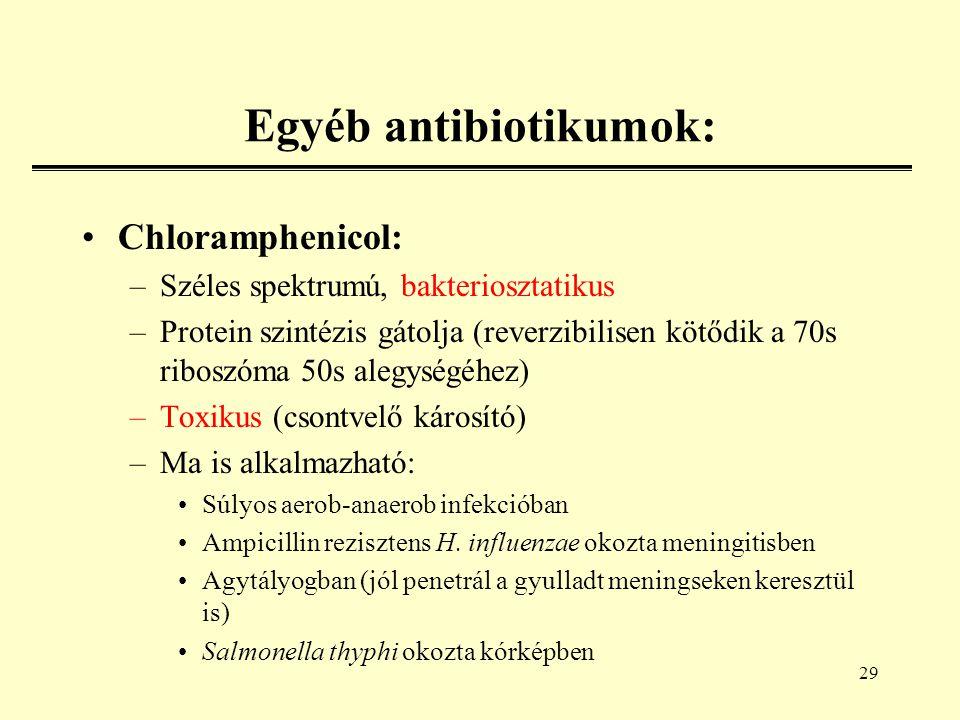 29 Egyéb antibiotikumok: Chloramphenicol: –Széles spektrumú, bakteriosztatikus –Protein szintézis gátolja (reverzibilisen kötődik a 70s riboszóma 50s alegységéhez) –Toxikus (csontvelő károsító) –Ma is alkalmazható: Súlyos aerob-anaerob infekcióban Ampicillin rezisztens H.