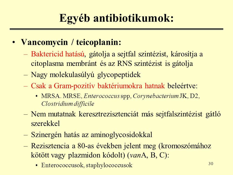 30 Egyéb antibiotikumok: Vancomycin / teicoplanin: –Baktericid hatású, gátolja a sejtfal szintézist, károsítja a citoplasma membránt és az RNS szintézist is gátolja –Nagy molekulasúlyú glycopeptidek –Csak a Gram-pozitív baktériumokra hatnak beleértve: MRSA.