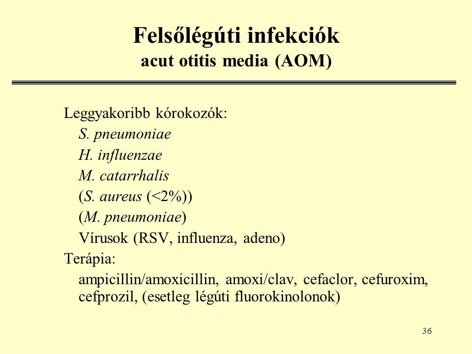 36 Felsőlégúti infekciók acut otitis media (AOM) Leggyakoribb kórokozók: S.