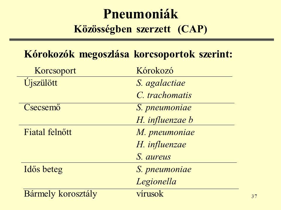 37 Pneumoniák Közösségben szerzett (CAP) Kórokozók megoszlása korcsoportok szerint: KorcsoportKórokozó ÚjszülöttS.