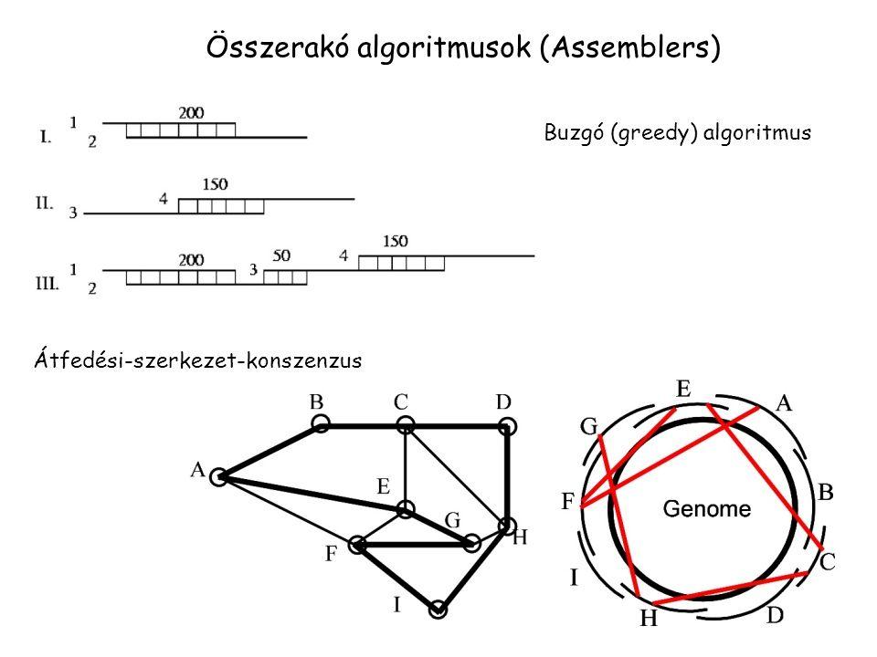 Összerakó algoritmusok (Assemblers) Buzgó (greedy) algoritmus Átfedési-szerkezet-konszenzus