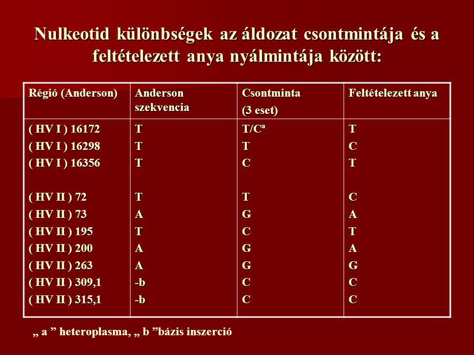 """Nulkeotid különbségek az áldozat csontmintája és a feltételezett anya nyálmintája között: Régió (Anderson) Anderson szekvencia Csontminta (3 eset) Feltételezett anya ( HV I ) 16172 ( HV I ) 16298 ( HV I ) 16356 ( HV II ) 72 ( HV II ) 73 ( HV II ) 195 ( HV II ) 200 ( HV II ) 263 ( HV II ) 309,1 ( HV II ) 315,1 TTTTATAA-b-b T/Cª TCTGCGGCCTCTCATAGCC """" a heteroplasma, """" b bázis inszerció"""