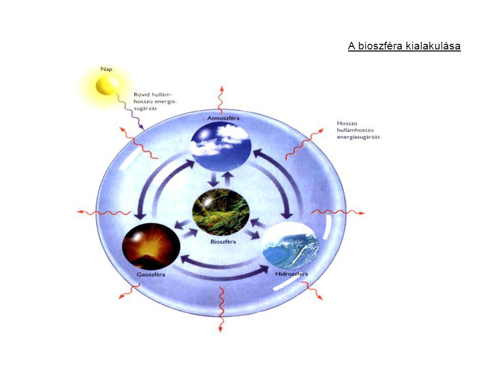 A bioszféra kialakulása