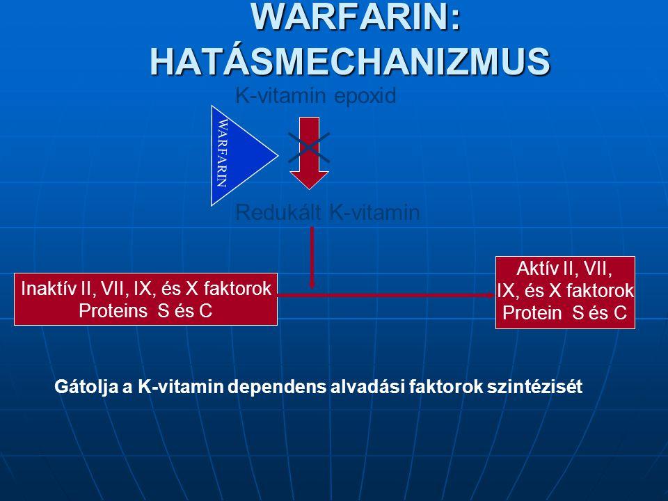 WARFARIN: HATÁSMECHANIZMUS WARFARIN: HATÁSMECHANIZMUS Inaktív II, VII, IX, és X faktorok Proteins S és C Aktív II, VII, IX, és X faktorok Protein S és