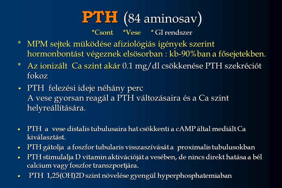 PTH ( 84 aminosav PTH ( 84 aminosav ) *Csont *Vese * GI rendszer *MPM sejtek müködése afiziológiás igények szerint hormonbontást végeznek elsösorban :
