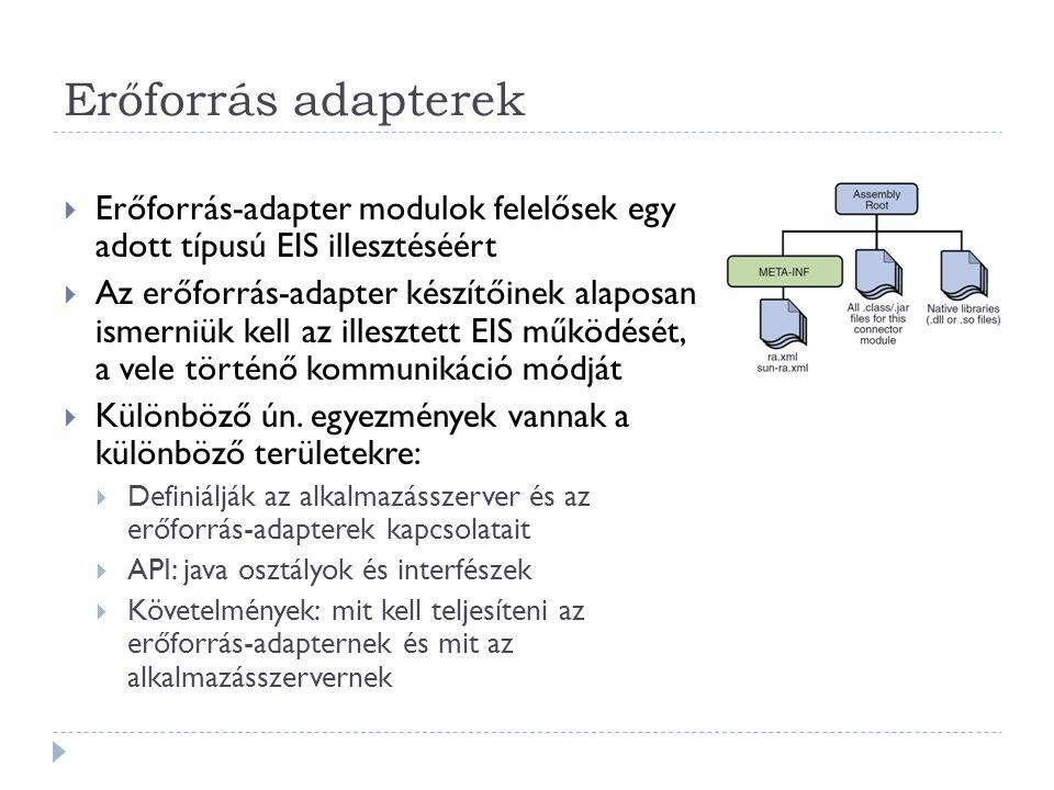 Erőforrás adapterek  Erőforrás-adapter modulok felelősek egy adott típusú EIS illesztéséért  Az erőforrás-adapter készítőinek alaposan ismerniük kel
