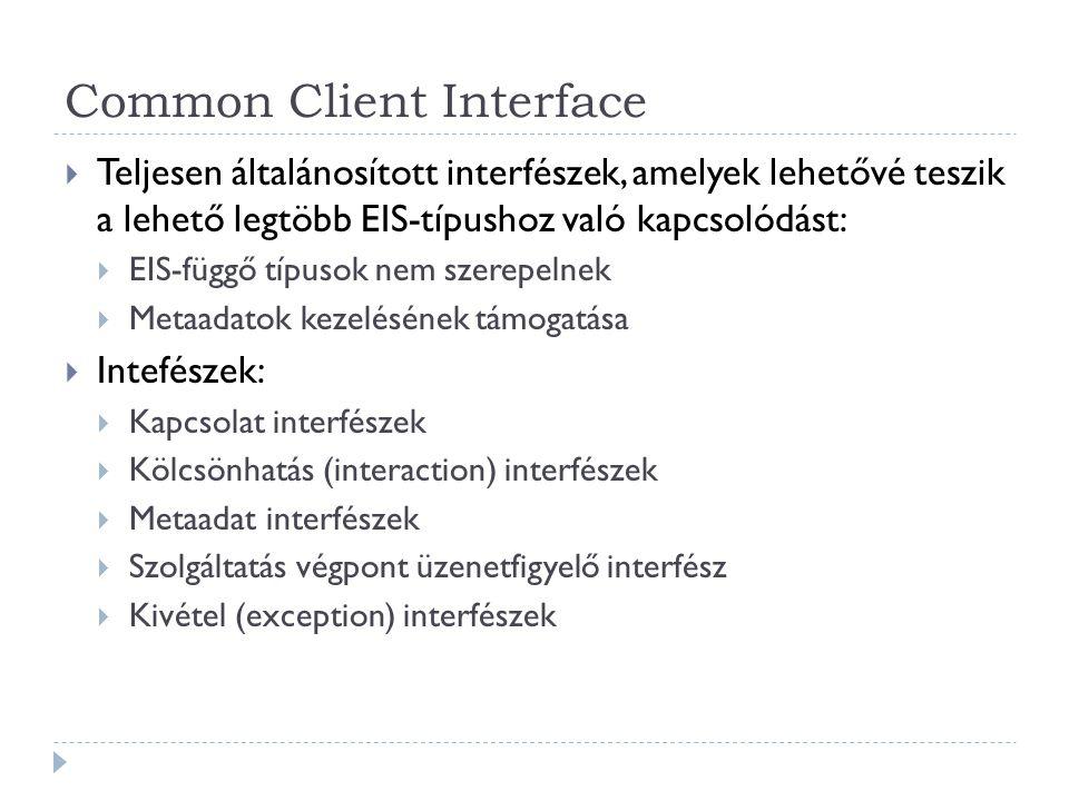 Common Client Interface  Teljesen általánosított interfészek, amelyek lehetővé teszik a lehető legtöbb EIS-típushoz való kapcsolódást:  EIS-függő tí